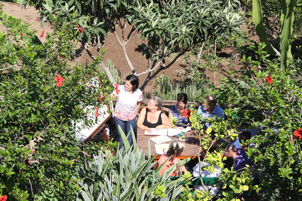 Italian course in the lush garden